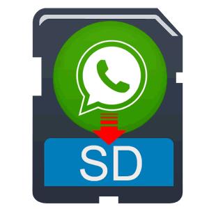 Come spostare foto whatsapp su SD e risparmiare memoria