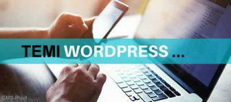 Temi per WordPress – la guida definitiva