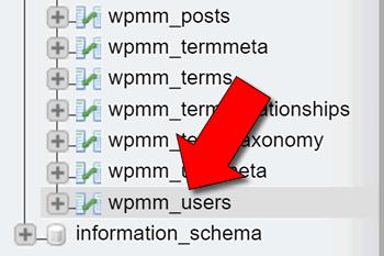3 modi per cambiare Username in WordPress
